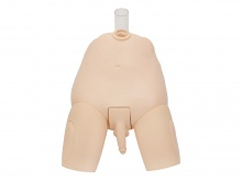 高级男性膀胱造瘘穿刺操作模型