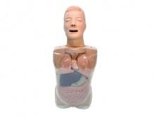 鼻泪管通液训练模型