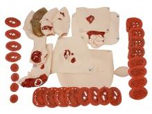 34件创伤模型组件 高级创伤评估模块