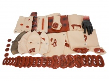 43件创伤模型组件 高级创伤评估模块