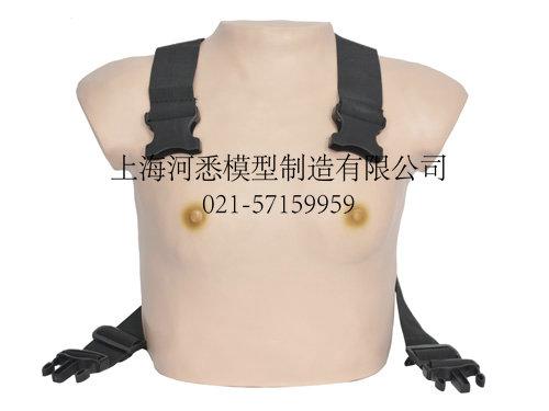 着装式乳腺检查模型