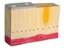 单层柱状上皮组织模型